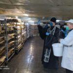 Священнослужители Мелитополя освящают пасхальные куличи в пекарнях города